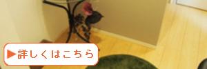 内観_300